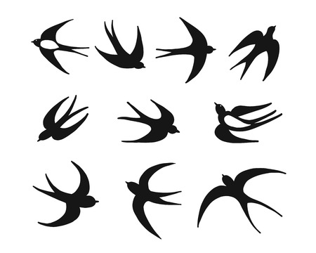 Swallows, sketch for your design. Vector illustration