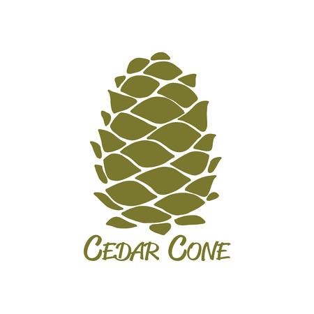 Cedar-kegel, schets voor uw ontwerp Stock Illustratie