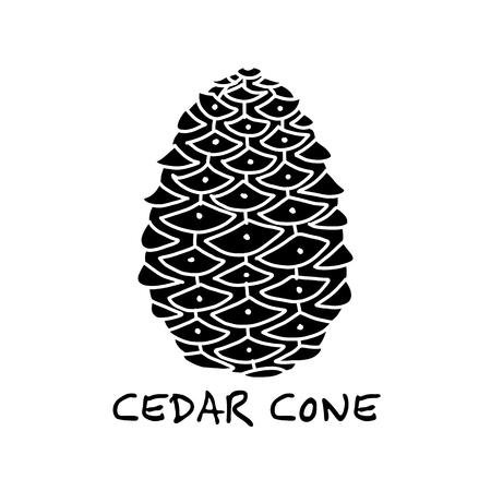 Cedar cone, sketch for your design Illusztráció