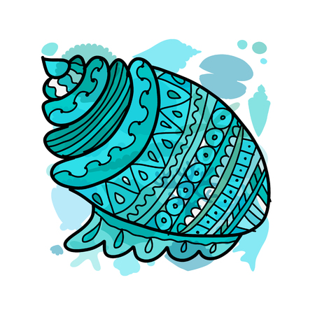 Ornate seashell isolated on white for your design. Vector illustration Illustration