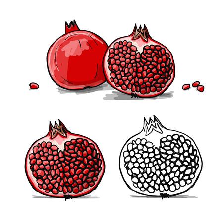 Pomegranate, sketch for your design. Vector illustration