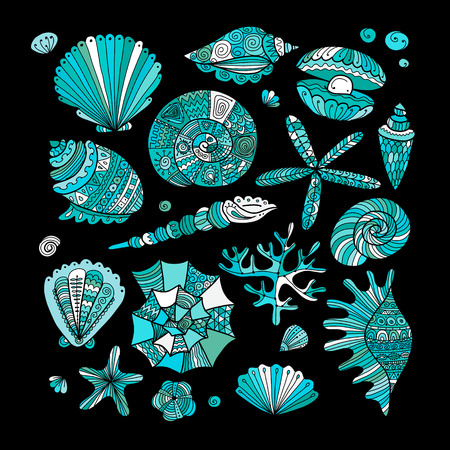 Marine collection, ornate seashells for your design.