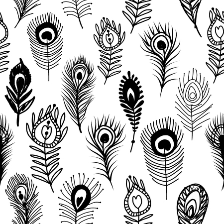 Peacock feathers, seamless pattern for your design isolated on plain background. 矢量图像