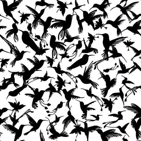 Colibri collection, sketch for your design Illustration