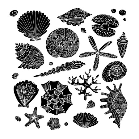 Marine collection, ornate seashells for your design