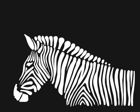 Zebra, schets voor uw ontwerp