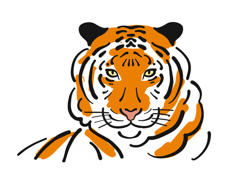 Tiger, sketch for your design. Vector illustration