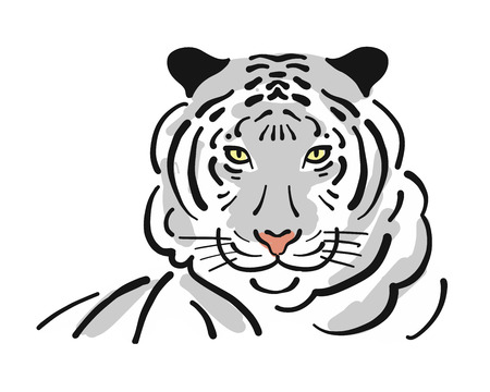 Tiger, sketch for your design