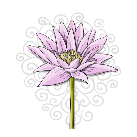 Lotus, lily water flower, sketch for your design. Vector illustration Ilustracja