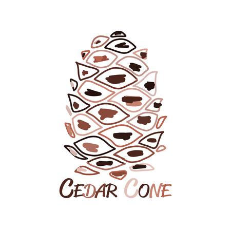 Cedar cone, sketch for your design. Vector illustration Illusztráció