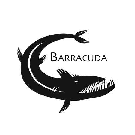 Barracuda fish for your design, vector illustration.