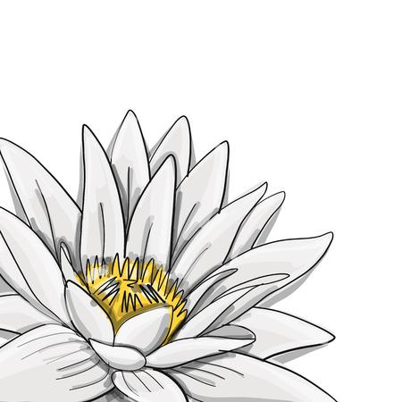 Lotus, flor de agua de lirio, boceto de su diseño Ilustración de vector