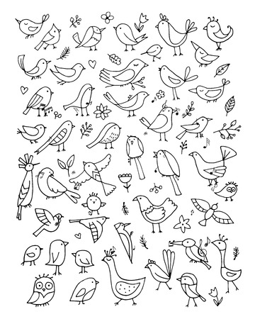 Birds collection, sketch for your design. Vector illustration Çizim