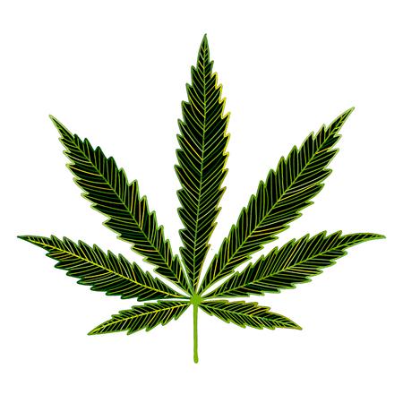 Cannabis leaf, sketch for your design Illustration