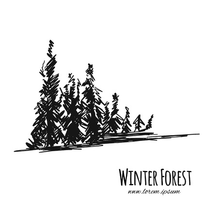 Winter forest, sketch for your design. Vector illustration