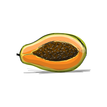 Papaya, sketch for your design. Vector illustration