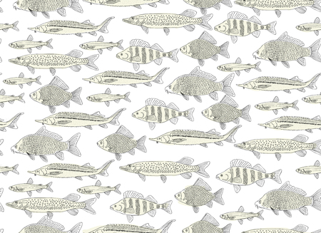 Fish collection, seamless pattern for your design. Vector illustration Vettoriali