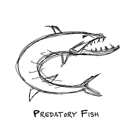 Barracuda fish for your design Illustration