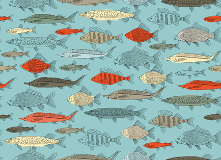 Fish collection, seamless pattern for your design. Vector illustration