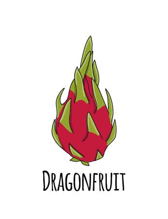 Dragonfruit, sketch for your design Stock Vector - 114808648