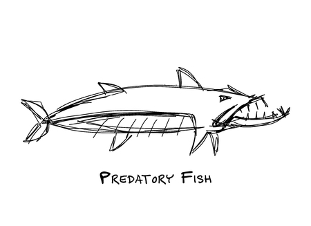 Barracuda fish for your design Ilustrace