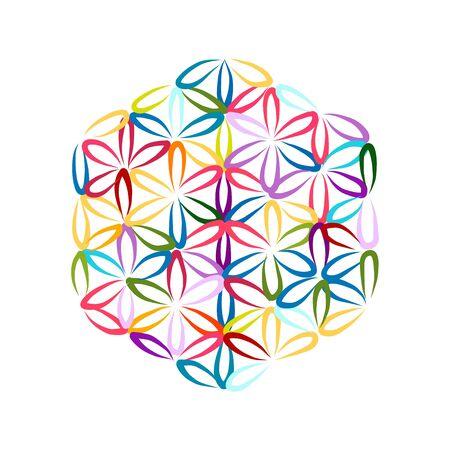 Flower of Life, sketch for your design Illustration