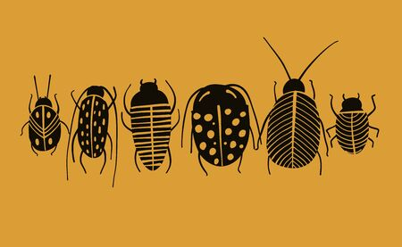 Funny beetles collection for your design