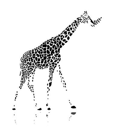Giraf, schets voor uw ontwerp