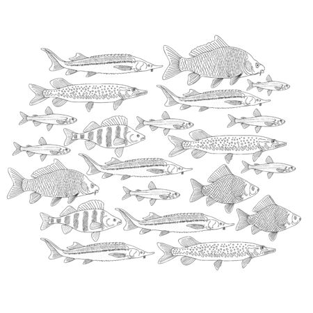 Fish collection, coloring sketch for your design