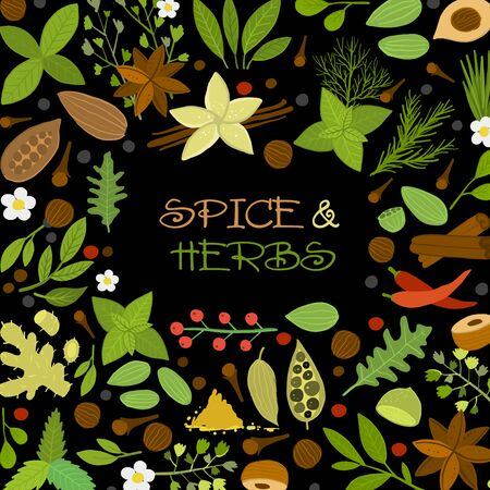 Herbs and spices background, seamless pattern for your design. Vector illustration 向量圖像