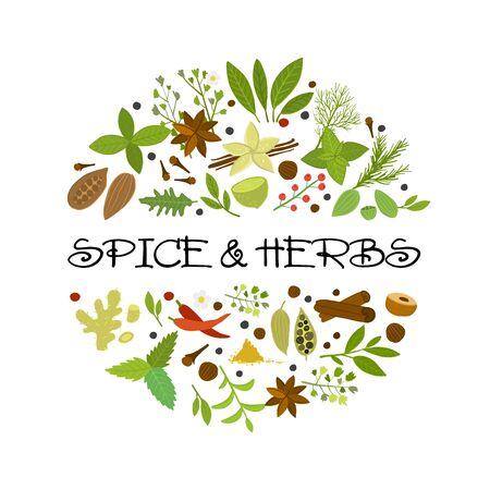 Design background for spice shop. Vector illustration