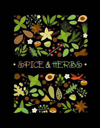 Spice shop design template, herbs and spices background 向量圖像