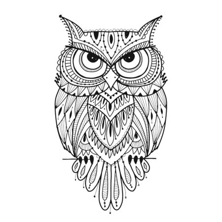 Ornate owl, coloring page for your design