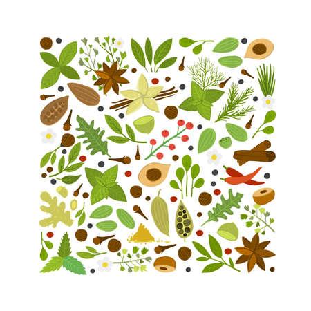 Spice shop design template, herbs and spices background Ilustração