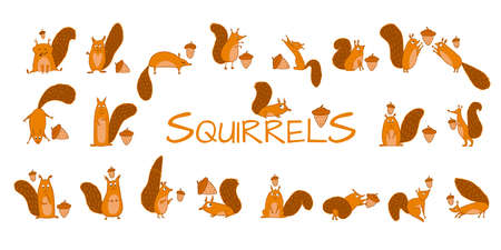 Funny squirrels with nut, collection for your design