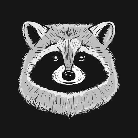 Funny Racoon Face Isolated on black.