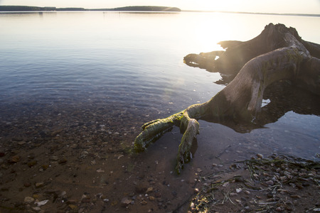 snag: snag lake Stock Photo