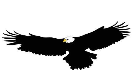 Águila negra con alas abiertas Ilustración de vector