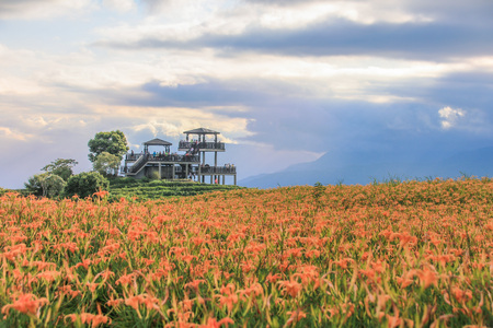 Taiwan Hualien beautiful scenery of daylily flowers with village and mountains in a sunny day Imagens - 86039279