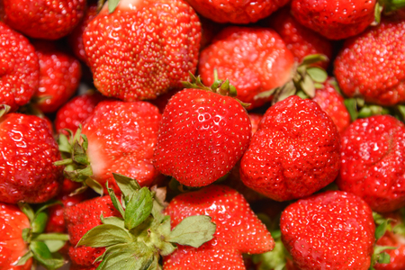 Fresh ripe perfect strawberry in box - Food Frame Background.