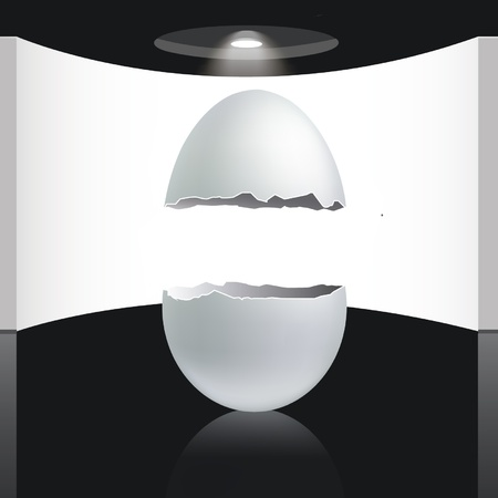 empty egg to place your concept Vector