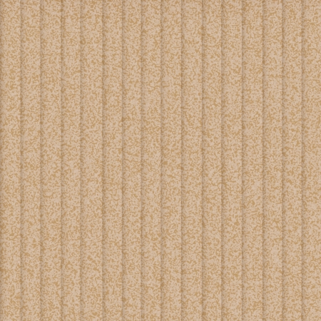 cardboard texture or background  vector design Vector