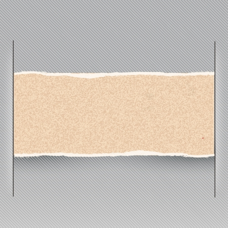 piece of cardboard to place your concept or text  vector design Vector