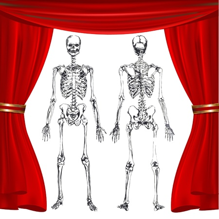 skeleton on a red show curtain background Vector