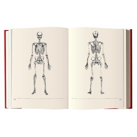 chest pain: skeleton on a vintage book Illustration