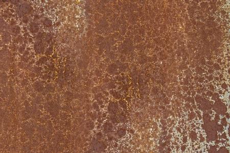 oxid wall photo