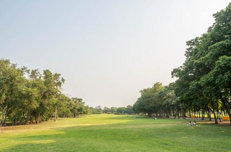 restful: Vachirabenjatas Park (Rot Fai Park) in Thailand