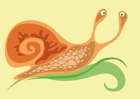 crawling animal: Cheerful snail crawling on the green leaf