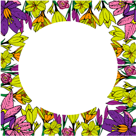 Spring colorful blooming crocuses