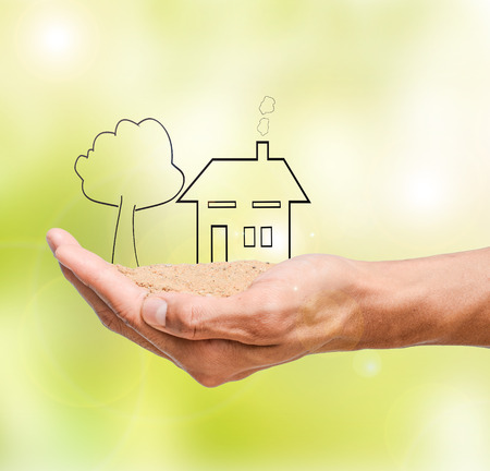 home and tree in hand holding ,green blur background Stock Photo